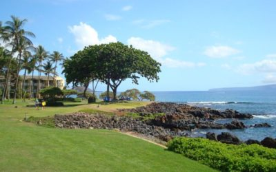 Maui Hotel Review – Wailea Beach Resort